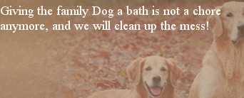 Home welcome to mutt puddles self serve dog wash solutioingenieria Image collections